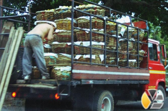 camioneros nicaragua cubanos